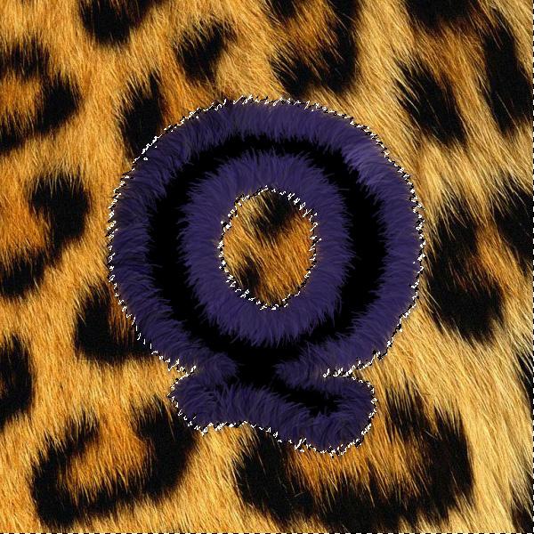 leopardtext14