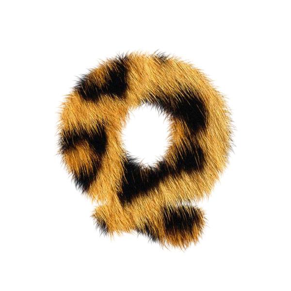 leopardtext15